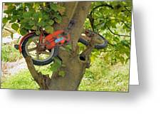 A Bike Growing In A Tree Greeting Card