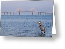 A Bird And A Bridge Greeting Card