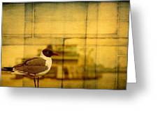 A Bird In New Orleans Greeting Card
