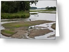 A Braided River Greeting Card