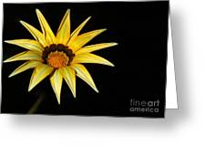 A Bright Yellow Star Greeting Card
