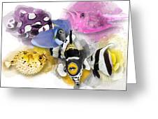 A Bunch Of Colorful Fish No 01 Greeting Card