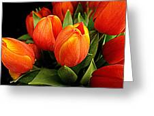 A Bunch Of Tulips Greeting Card
