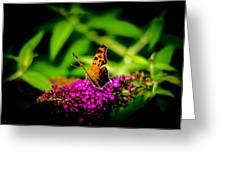 A Butterflies World  Greeting Card