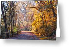 A Change Of Seasons On Forbidden Drive Greeting Card