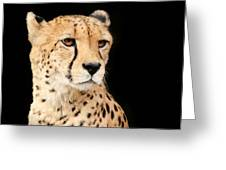 A Cheetah Named Jason Greeting Card