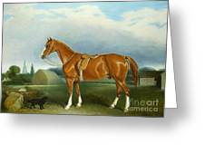 A Chestnut Hunter And A Spaniel By Farm Buildings  Greeting Card by John E Ferneley