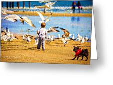 A Child At The Beach Isle Of Palms Sc Greeting Card