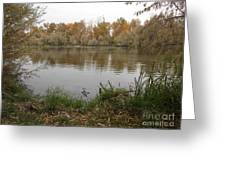 A Cloudy Day On The Pond Greeting Card
