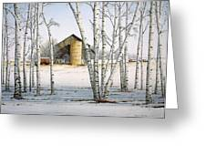 A Cluster Of Birch Greeting Card