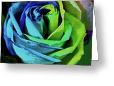 A Color Celebration Greeting Card