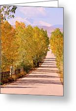 A Colorful Country Road Rocky Mountain Autumn View  Greeting Card