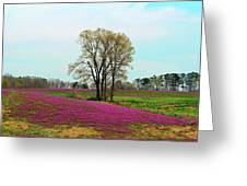 A Colorful Field Greeting Card