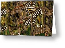 A Confusion Of Zebras Greeting Card