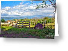 A Costa Rica View Greeting Card