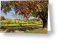 A Country Road Greeting Card