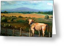 A Cow Up In Missouri Greeting Card