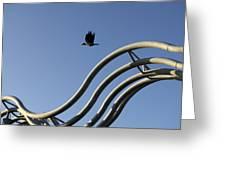 A Crow In Flight, Arhus, Denmark Greeting Card