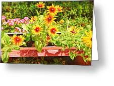 A Daisy Day Greeting Card