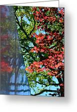 A Day Of Reflection Greeting Card