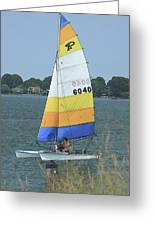 A Day To Sail Greeting Card by Karol  Livote