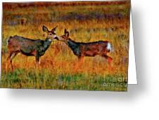 A Deer Kiss Greeting Card