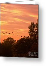 A Different Approach To Sunset Greeting Card