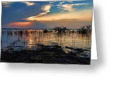 A Different Shoreline Greeting Card