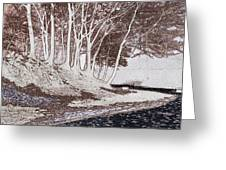 A Different World #1. Groove Of Trees Greeting Card