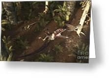 A Dimorphodon Pterosaur Chasing An Greeting Card