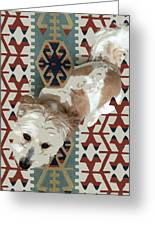 A Dog In On A Rug Greeting Card
