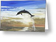 A Dolphin's Life Greeting Card