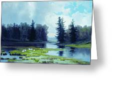 A Dreary Day At The Pond Greeting Card