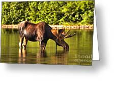 A Drink At Fishercap Greeting Card
