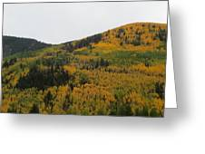 A Drive Throw The Forest In The Fall Greeting Card