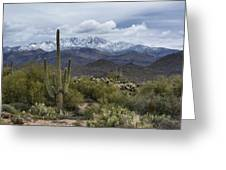 A Dusting Of Snow In The Sonoran Desert  Greeting Card