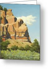 A Face In New Mexico Greeting Card