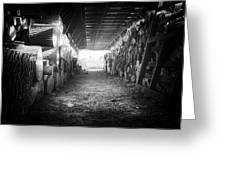 Farmer's Woodpile At Lusscroft Farm In Black And White Greeting Card