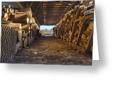 Woodpile At Lusscroft Farm In Color Greeting Card