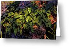 A Fern Botanical By H H Photography Of Florida Greeting Card