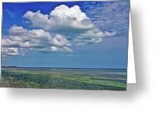 A Few Clouds In Keywest Greeting Card