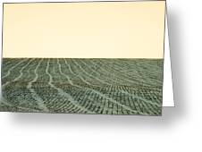 A Field Stitched Greeting Card