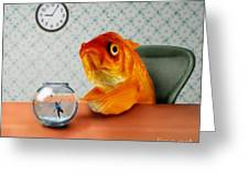 A Fish Out Of Water Greeting Card by Carrie Jackson