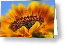 A Floral Sunset Greeting Card