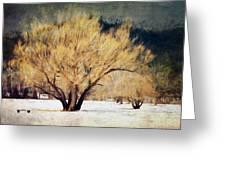 A Forgotten Winter Greeting Card