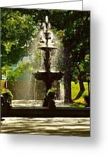 A Fountain In A St. Paul Park Greeting Card