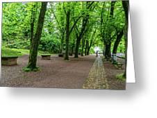 A Freiburg Germany Park Greeting Card