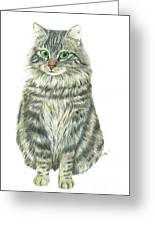 A Furry Cat  Greeting Card