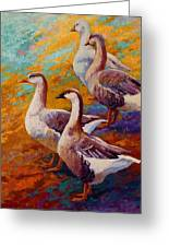 A Gaggle Of Four Greeting Card