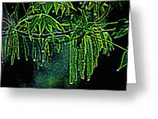 A Glow With Dew Greeting Card